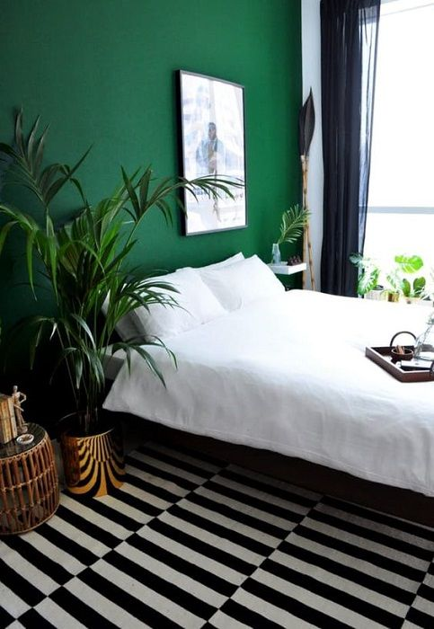 The Best Dark Green Color To Use in Your Home
